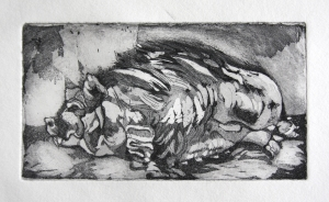 RecliningPig_2_Etching_Full
